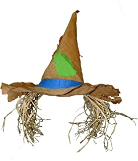 Raggedy Scarecrow Patched Costume Hat w/ Raffia Hair