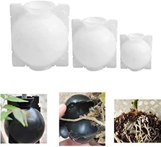 MRLZLT 3Pcs Plant Rooter Box,Plant Rooting Device High Pressure Propagation Ball High Pressure Box Grafting(S,M,L) (White)