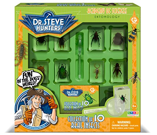 Dr. Steve Hunters - Bugs World Collection - 10 Real Insects - Scientific Educational Toy
