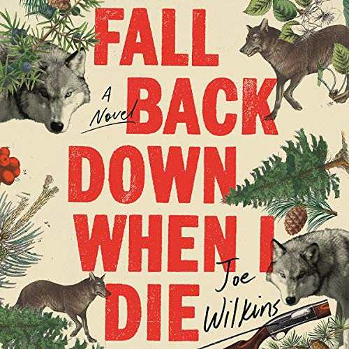 Fall Back Down When I Die audiobook cover art