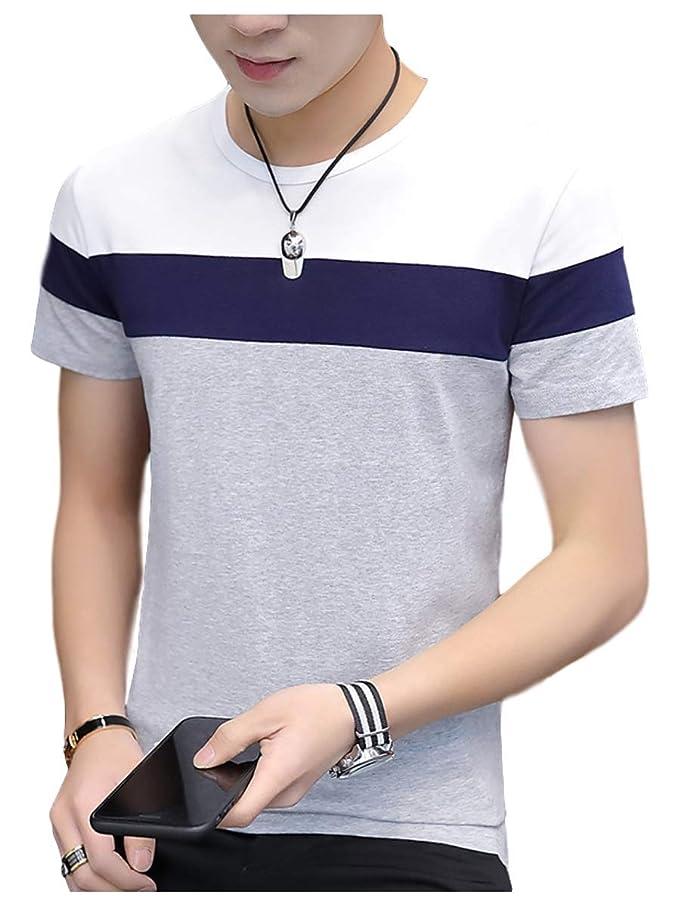 指標親密なコンサート[サン ブローゼ] グラデーション tシャツ 半袖 ラウンドネック トップス カットソー 涼しい 綿 夏 M ~ XL メンズ
