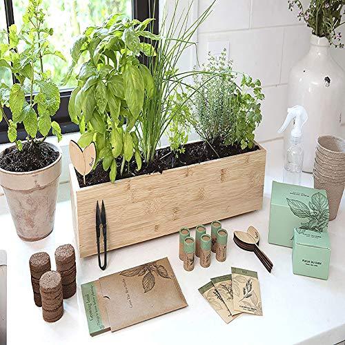 CRZJ Herb Garden Starter Kit, Indoor Garden Organic Herb Kit with Premium Herb Seeds, for Growing Herbs Indoors, Kitchen, Balcony