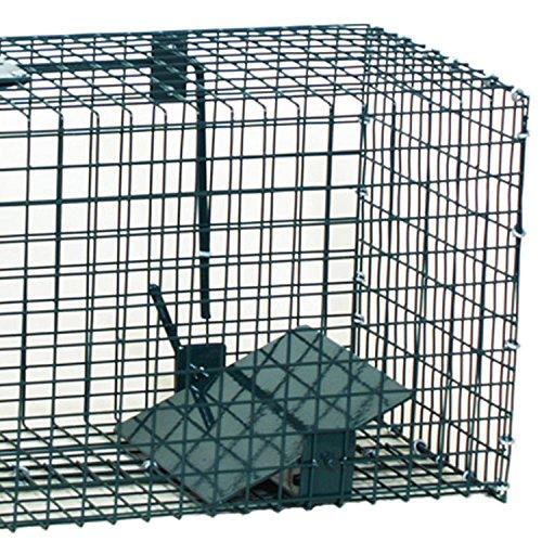Moorland Piège de Capture - Cage - pour Animaux : Lapin, Rat - Simple à Utiliser - infaillible - 60x23x23cm - avec Une entrée 5001
