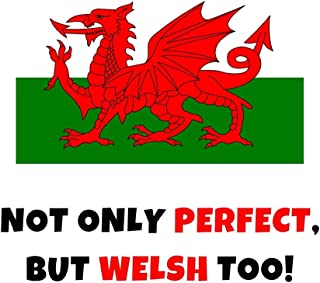 Not Only Perfect But Welsh Too!: Funny Novelty Gifts - Lined Notebook Journal (6