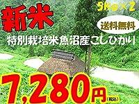 平成28年新潟県産特定産地米 (魚沼産特別栽培米5㎏×2)