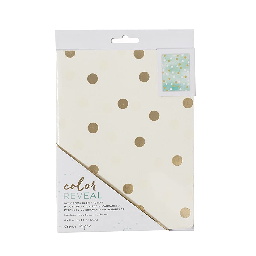 American Crafts Crate Paper Watercolor Notebook Color Reveal 6 x 8 Inch Dots