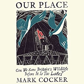 Our Place cover art