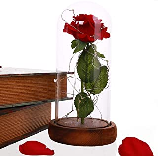 New Beauty and The Beast Rose, Enchanted Red Silk Rose Kit and LED Fairy String Lights Fallen Petals in Glass Dome on Wooden Base Best Gift for Her. Birthday Party