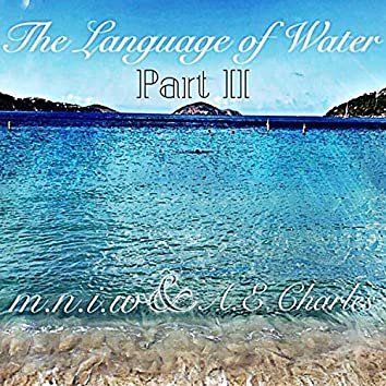 The Language of Water (Part II)