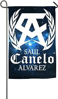 Best canelo alvarez mexican flag Reviews