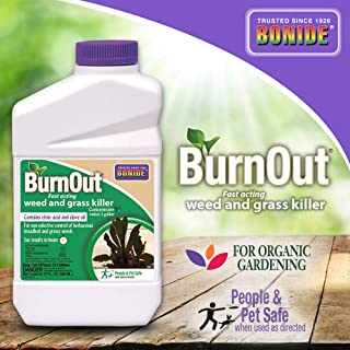 Bonide (BND7464) - Burnout Concentrate, Fast Acting Weed and Grass Killer (1 qt.)