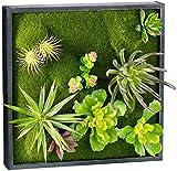 Carlo Milano Vertikaler Garten: Vertikaler Wandgarten Karl mit Deko-Pflanzen, 30 x 30 cm (Wandgarten innen)