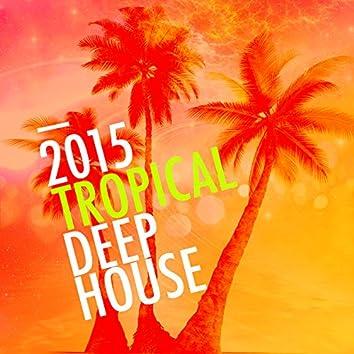 2015 Tropical Deep House