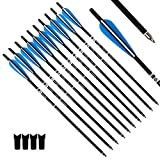 Tiger Archery 20inch Hunting Archery Carbon Arrow Crossbow Bolts with 4' vanes Feather and Replaced Arrowhead/Tip(Pack of 12) … (Blue)