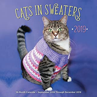 Cats in Sweaters 2019 Wall Calendar