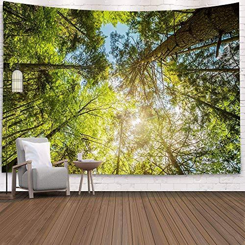 KHKJ Tapiz de Cascada 3D Natural Toalla de Playa Paisaje Bosque primitivo Impresión de Corriente Alfombra de Pared Arte del hogar Tapiz Decoración A9 95x73cm