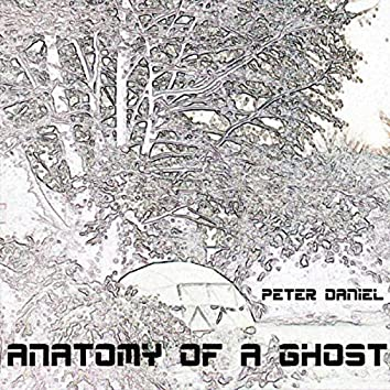 Anatomy Of A Ghost