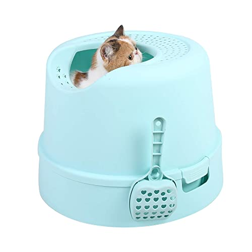 PetnPurr Top Entry Cat Litter Box with Lid and Scoop – Large