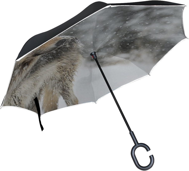 Rh Studio Ingreened Umbrella Wolf Snow Winter Predator Large Double Layer Outdoor Rain Sun Car Reversible Umbrella