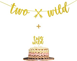 Two Wild Gold Glitter Banner Sign with Two Wild Cake Topper for Two Wild Boho Tribal Themed 2nd Birthday Party Supplies