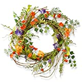 National Tree Company Spring & Summer Wreath 22 Inch Branch Wreath with Mixed Morning Glory Flowers for Front Door or Home Decoration