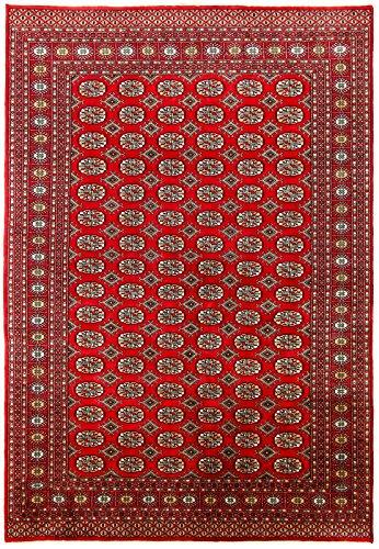 CarpetFine: Pakistan Buchara 2ply Teppich 185x287 Rot - Handgeknüpft - Ornament