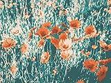Pintura Al óleo Digital Pequeña Flor Roja Arte Pintura Set Diy Regalo Decoración Del Hogar