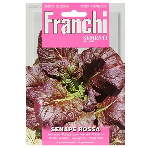 Seeds of Italy Ltd Franchi Sachet de graines de moutarde rouge