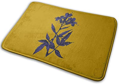 Art Blue Flowers Carpet Non-Slip Welcome Front Doormat Entryway Carpet Washable Outdoor Indoor Mat Room Rug 15.7 X 23.6 inch