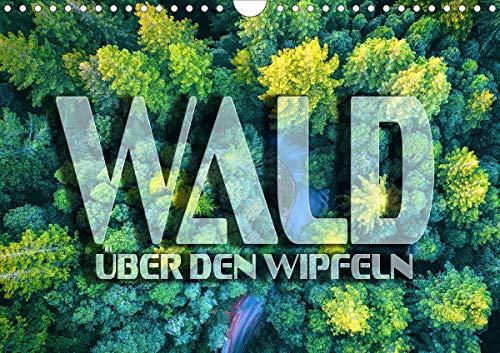Wald - über den Wipfeln (Wandkalender 2021 DIN A4 quer)