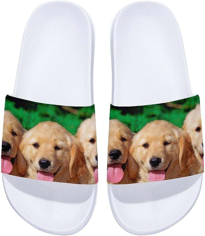 Golden Retriever Smiling 5% OFF Dog Men's Women's San Comfort Slide Ranking TOP1 and