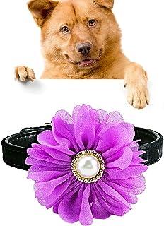 Collar Luminoso para Perros Color Rosa Dabixx Colgante de Seguridad con luz LED para Mascotas Gatos identificaci/ón