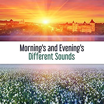 Morning's and Evening's Different Sounds: 60 Experience of Relaxation and Quiet Nature, A Surge of Positive Energy