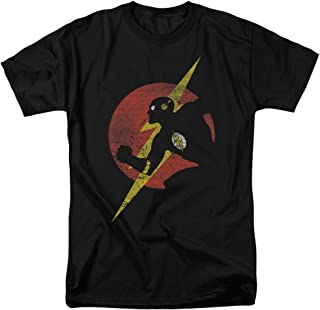 Justice League of America DC Comics The Flash Symbol...