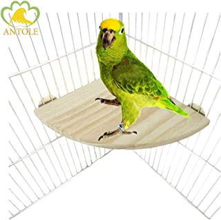 ANTOLE Parrot Bird Platform, Wooden Fan Shape Springboard Bird Perch Stand Playground Cage Accessories for Parrot Hamster ...