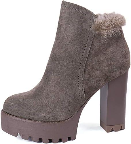 HBDLH Chaussures pour Femmes La Plate - Forme Rétro Dure DE 10 Cm De Talon De Chaussures Imperméables Bottes Frosted Peau Martin Bref des Bottes d'hiver.