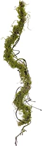 """Contemporary Home Living Set of 6 Green Moss Vine Plastic Garland 39"""""""