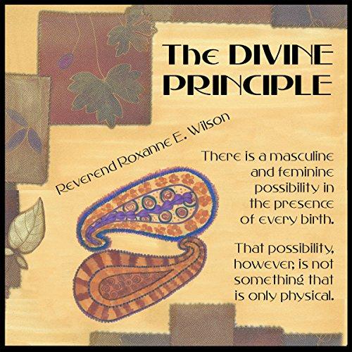The Divine Principle audiobook cover art