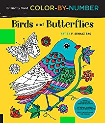 birds and butterflies color by number coloring book