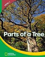 Parts of a Tree (World Windows, Level 1)