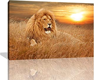 KALAWA Animal World Series Wild Lion in The Sunset of The African Savanna Canvas Prints Paintings for Room Decoration Stretched and Framed Ready to Hang(16''W x 24''H)