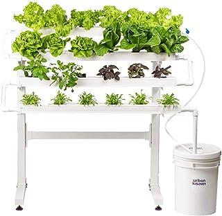 UrbanKisaan Home Kit 24 Plant Kit