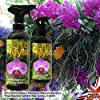 Growth technology 5025644914709 Orchid Myst Spray 750Ml Concimi Liquidi Orto E Giardino, Unica #3