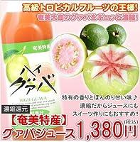 栄食品 グアバジュース
