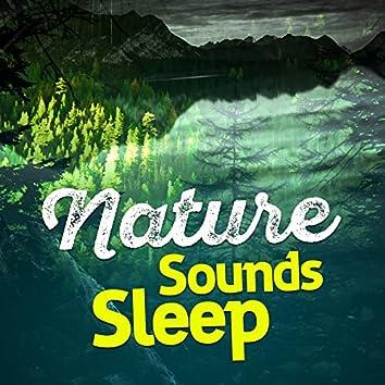 Nature Sounds Sleep