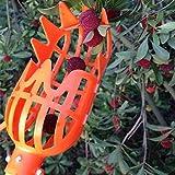 Chnrong Picking Fruit Tool, Fruit Picker Manual Picking Catcher Tool, Fruit Picker Basket Head, Labor Saving Tool Fruits Catcher for Harvest Picking Apple Mango Pear Peach Mango Lemon Cherry Orange