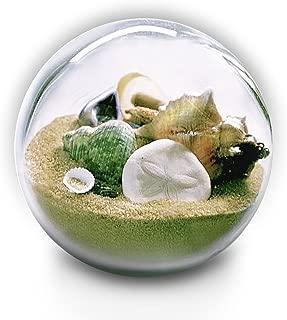 Sandglobelove: Collectible Sand and Seashell Sandglobe.