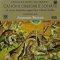 Canoni, Obblighi E Sonate In