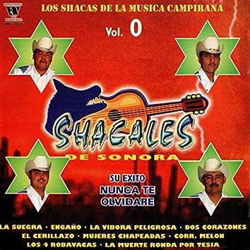 Los Chacas De La Musica Campirana