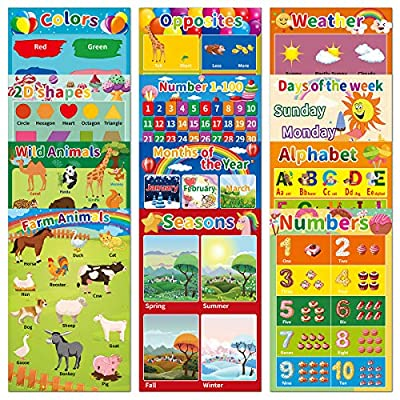 12Pack Laminated Educational Posters for Presch...